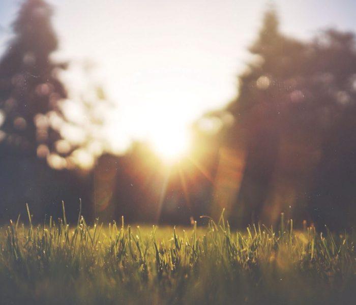 Güneş olsun da…