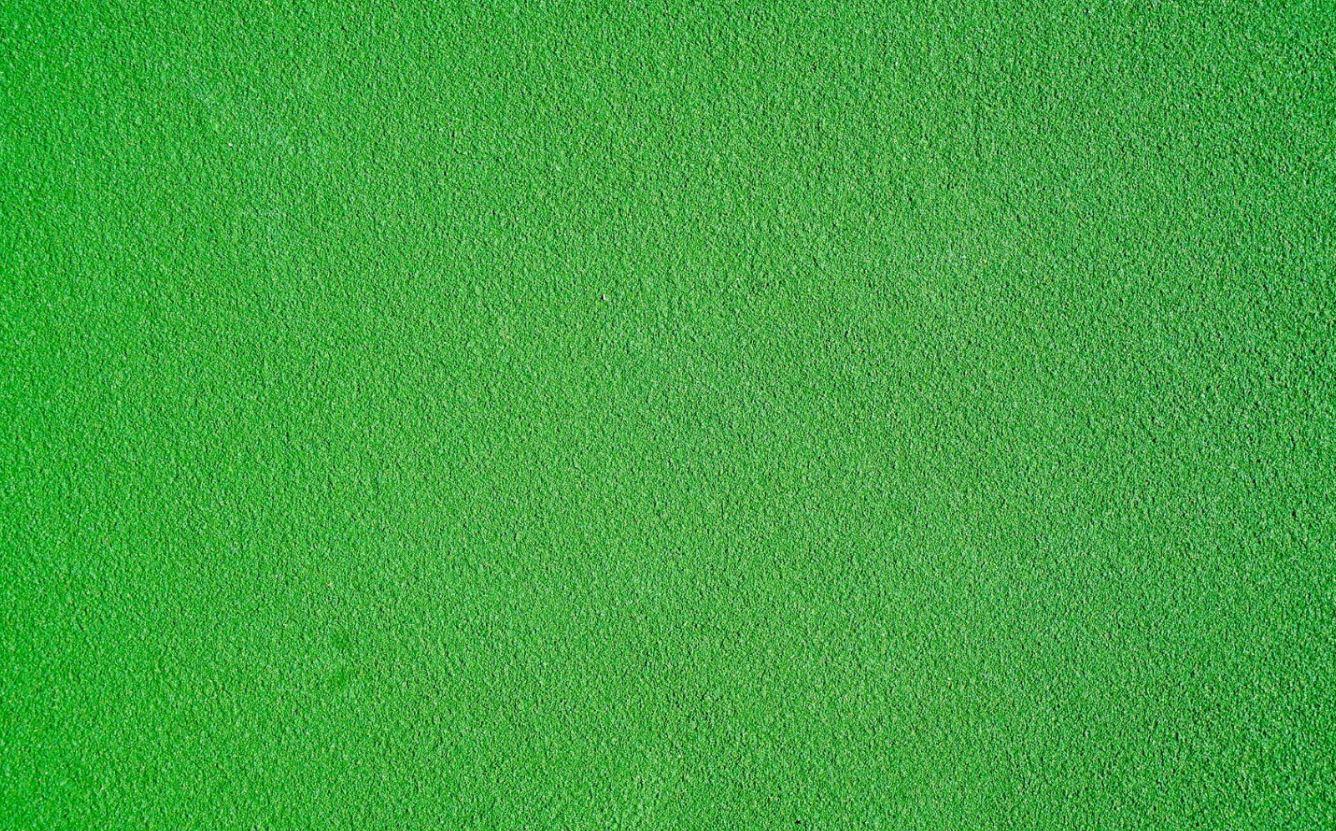 Yeşil Çay Tarlaları
